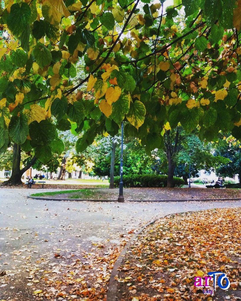 La mia galleria fotografica di Torino - Autunno al giardino La Marmora di Torino